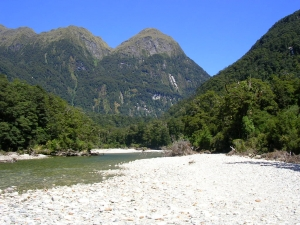 Fiordland - a secret stream