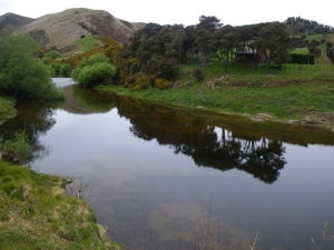 On the Waikouaiti